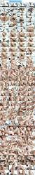 Monique Woods - blonde slut Airtight DP SZ1471 (2017) HD 720p